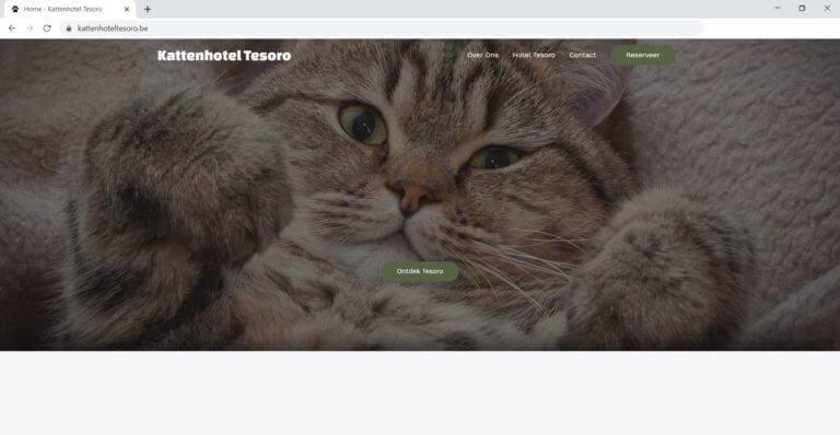 Kattenhotel Tesoro Website laten maken